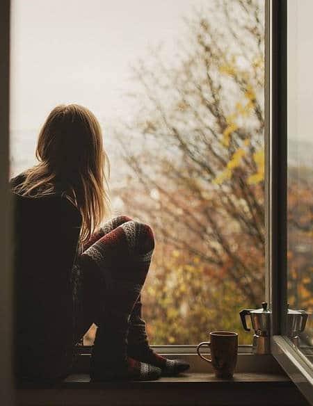 на прозореца