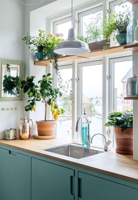 идеи за декорация на кухненските прозорци